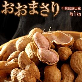 千葉県成田産 高梨さんのジャンボ生落花生 おおまさり 約1kg(約500g×2) 冷蔵 産地直送