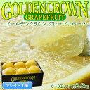 フロリダ産 ゴールデンクラウングレープフルーツ ホワイト 6〜8玉 約2.5kg frt☆