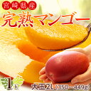 宮崎産 完熟マンゴー 2L 1玉(350〜449g) ※常温 frt ☆
