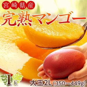 宮崎県産 完熟マンゴー 2Lサイズ 1玉(350〜449g) 常温 簡易包装 マンゴー フルーツ ギフト ※送料無料