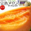 《送料無料》北海道産 北原さんの「完熟メロン」 化粧箱入 2玉(約1.4kg×2) ※常温 frt ☆