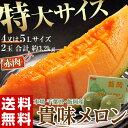 《送料無料》千葉県・飯岡産 貴味メロン(赤肉) 4〜5L×2玉 約3.2kg frt ☆
