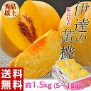 ≪送料無料≫福島産 「伊達の黄桃」約1.5kg(5〜10玉) frt ☆