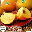 《送料無料》熊本県産ご自宅用訳有り「太秋柿」8〜14玉約3.5kgfrt○