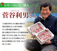 日本一のいちご職人