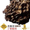 新潟県産 黒舞茸『真』 ご家庭用 約700g ※冷蔵 ☆