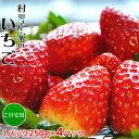 イチゴ 苺 茨城県産 『村田さん家のいちご』 約250g×4パック ※冷蔵 frt○