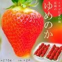 長崎県産いちご「ゆめのか」1p:約270g(7〜14粒)×2P※冷蔵frt☆
