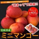 宮崎県産 『ミニマンゴー』 約400g 目安として3〜20玉 frt ○