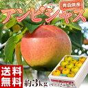 《送料無料》青森産「アンビシャス」 約3kg (9〜12玉) frt ○