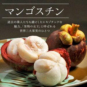 『生マンゴスチン』 タイ産 4玉×3パック 計12玉 ※冷蔵 送料無料