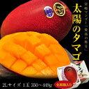 宮崎産 完熟マンゴー「太陽のタマゴ」2L(350〜449g)1玉 化粧箱入り ※常温 frt ○