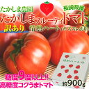 【訳あり・糖度9度以上】『たかしまフルーティトマト 情熱ハート』長崎産 約900g ☆