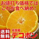 ≪送料無料≫佐賀県産 露地栽培デコポン 約2.5キロ ※常温 frt ☆