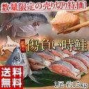 《送料無料》 北海道産 訳あり 傷負い時鮭 約1.5kg のビッグな1本物 ※冷凍 sea ☆