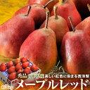 《送料無料》紅色に染まる西洋梨「メープルレッド」 山形県産 7〜13玉 約3kg ☆ frt
