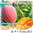 北海道産 「神内ファーム21 完熟マンゴー」 2Lサイズ(350g)以上 ※冷蔵 frt ○