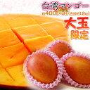 台湾産 大玉 マンゴー 約400g×3玉(合計約1.2kg)送料無料