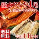 《送料無料》極大うなぎ4尾(1尾:約270g) 白焼き2食分(1食分:約50g) sea ☆