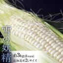 《送料無料》北海道産 『雪の妖精 とうもろこし』 約3kg 8本前後 ※冷蔵 ☆