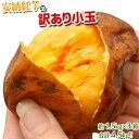 《送料無料》種子島産「安納紅芋」小玉約1.5キロ