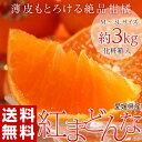マドンナ オレンジ