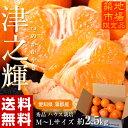 《送料無料》『津之輝(つのかがやき)』 愛知県 蒲郡産 M〜Lサイズ 約2.5kg 秀品 frt ☆