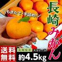 《送料無料》大玉手詰め『長崎みかん』 2〜3L 約4.5kg frt ☆