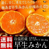 《送料無料》『冷温貯蔵早生みかん』長崎県産2S〜Mサイズ約1.2kgfrt☆