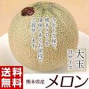 《送料無料》熊本県産 メロン(赤肉or青肉:アンデス・クインシーなど) 大玉2玉セット 約1.8kg(900g前後×2玉) めろん メロン melon お試し