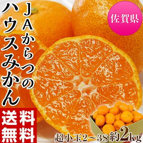 みかん 佐賀県産 JAからつ 超小玉ハウスみかん 2〜3Sサイズ 約2kg 送料無料 frt☆