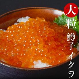 同梱にオススメ いくら イクラ 食品 大粒 鱒子イクラ 約250g 4〜5人前 冷凍