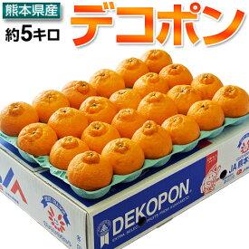 デコポン でこぽん 熊本県産 約5kg 15〜24玉 送料無料 デコポン ※糖度13度選別