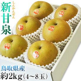 梨 なし 鳥取県産 新甘泉 しんかんせん 約2kg(4〜8玉) 送料無料 ※冷蔵