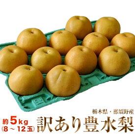 ちょっと訳大玉『豊水梨』栃木県那須野産 約5kg(8~12玉)※冷蔵 送料無料