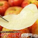 【糖度12.5度選別】りんご つがる 青森県産 葉取らず サンつがる 訳あり品 約3kg (目安として7〜15玉) 岩木山りんご…