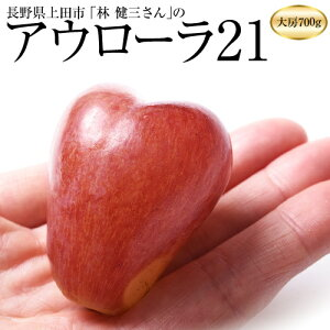 ぶどう 葡萄 ブドウ 長野県産 林健三さんのアウローラ21 1房 約700g 送料無料 産地直送 常温 高級 ギフト 贈答 贈り物