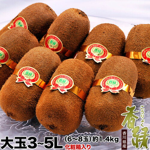 キウイ 送料無料 香川県産 キウイ 香緑 化粧箱 3〜5L 約1.4kg (8〜10玉)
