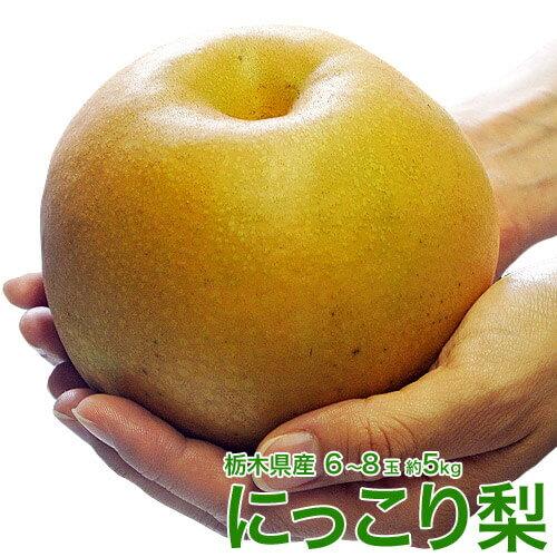 梨 送料無料 栃木県産 にっこり梨 大玉 6〜8玉 秀〜優品 約5kg
