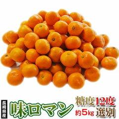 みかん送料無料長崎県産みかん味ロマン約5kg(2S〜M)【糖度12度選別】