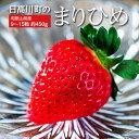 送料無料いちご和歌山県産日高川町の「まりひめ」約450g9〜15粒入※冷蔵