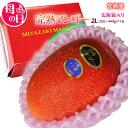 母の日 特選 宮崎県産 完熟 マンゴー 2Lサイズ(350〜449g)以上×1玉 ※カーネーション(造花)・メッセージカード付…