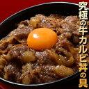 ご飯のお供 送料無料 『牛カルビ丼の具』1食100g×10食セット ご飯のおとも ごはんのおとも お弁当 お昼ご飯 夜食 冷…