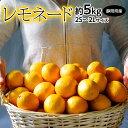 甘いレモン 柑橘 静岡県産 レモネード 約5kg 2S〜2Lサイズ 常温 送料無料