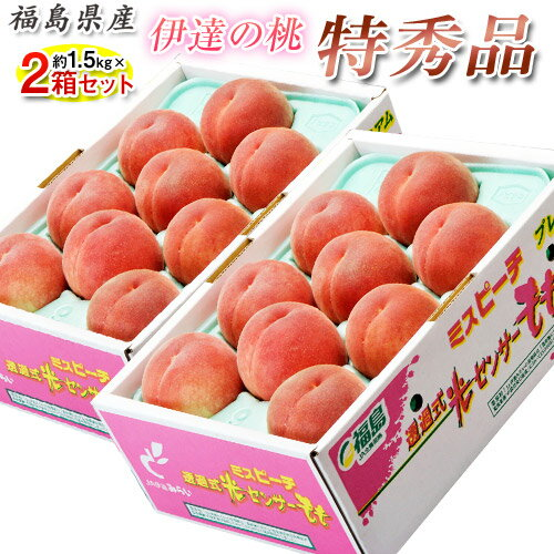 桃 もも 福島県産 伊達の桃 特秀品 約1.5kg×2箱 1箱あたり5〜10玉 送料無料 産地直送