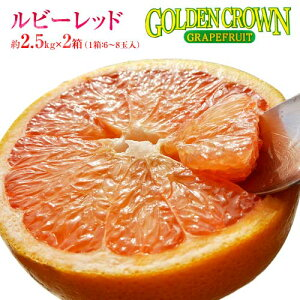 柑橘 フロリダ産 ゴールデンクラウン グレープフルーツ ルビー 約2.5kg×2箱(1箱:6〜8玉入) 送料無料