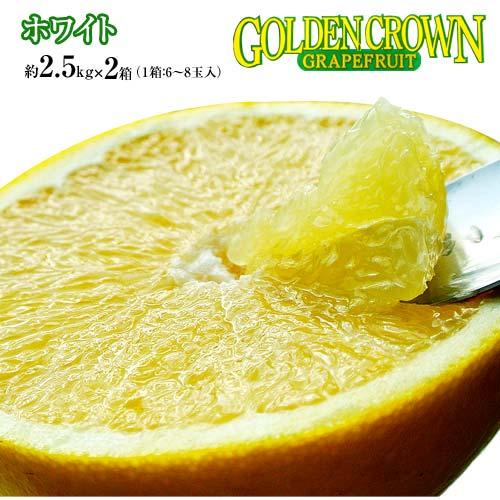 柑橘 フロリダ産 ゴールデンクラウン グレープフルーツ ホワイト 約2.5kg×2箱(1箱:6〜8玉入) 送料無料