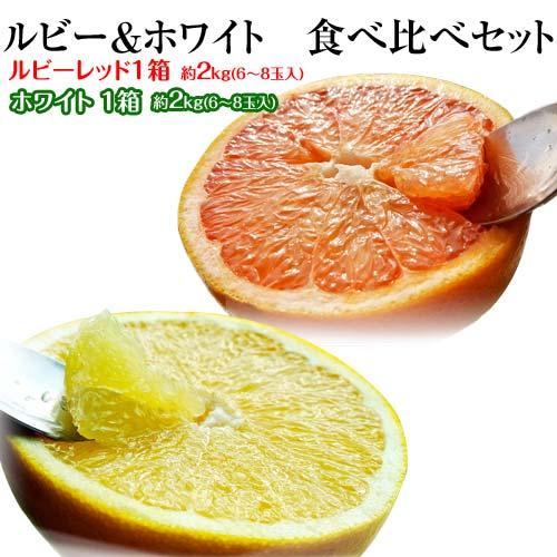 柑橘 フロリダ産 ゴールデンクラウン グレープフルーツ ルビー&ホワイト 約2.5kg×2箱(1箱:6〜8玉入) 送料無料