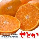 柑橘 フルーツ 愛媛県 中島地域産 訳あり せとか 約5kg S〜3Lサイズ 目安として16〜33玉 常温 送料無料