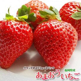 いちご イチゴ 福岡県産 あまおう G(グランデ) 約270g×2P 送料無料 ※冷蔵